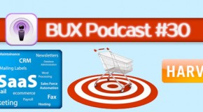 Better User Experience Podcast #30: Harvest Review and Software as a Service