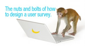 The Nuts and Bolts of How to Design a User Survey