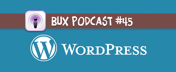 Better User Experience Podcast #45: WordPress, the Start Up Spirit, and How to Get Clients